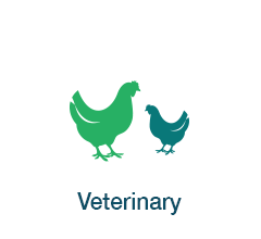 Applications - Veterinary